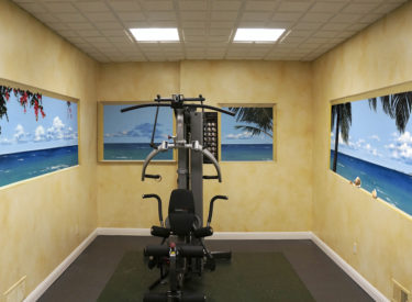 Panoramic trompe l'oeil mural in exercise room