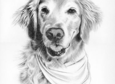 Maggie – Graphite Pencil
