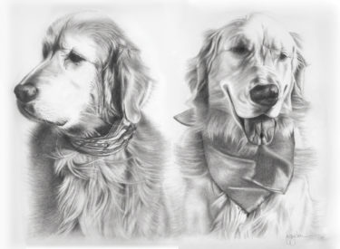 Lucas & Dakota – Graphite and Pencil